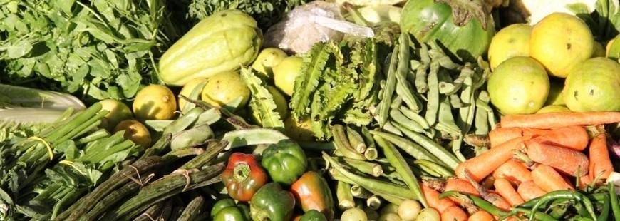 Manger bio pour éviter les pesticides