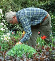 Chasse aux oeufs de Pâques : comment préserver votre jardin ?