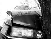 arbre-accident-voiture
