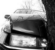 voiture-arbre