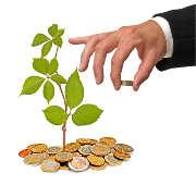 pieces-argent-plante-homme-main