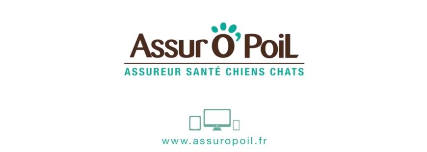 Découvrez la 1e campagne télé d'Assur O'Poil