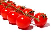 Ford : des matériaux à base de tomate