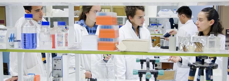 Superbactéries : un risque sanitaire réel