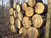 Le bois de chauffage non certifié peut entrainer un incendie