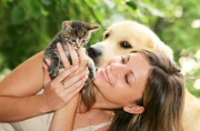 Le point sur l'assurance chien chat