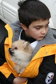 En hiver, protégez votre chien du froid
