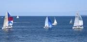 Course de voiliers : la Macif sur le Vendée Globe