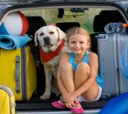 Avant de partir en vacances, vérifiez votre voiture