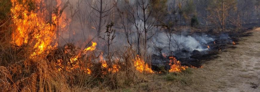 De graves incendies dans les Bouches-du-Rhône