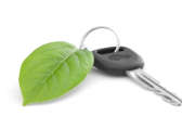 Les ventes de voitures vertes se portent bien dans l'Hexagone