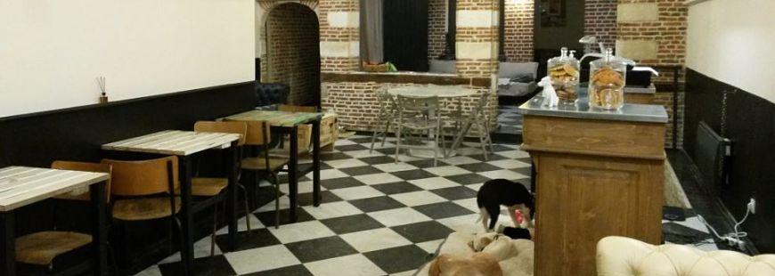Bienvenue au Waf, le bar à chiens !