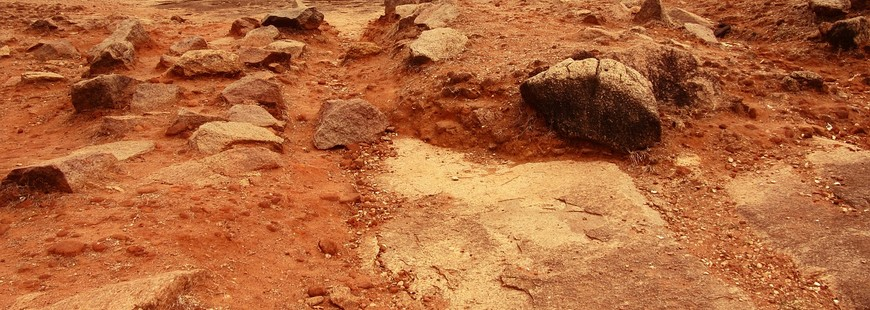 Des scientifiques reproduisent la terre martienne pour cultiver