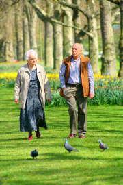 Le � Train Bien Vivre pour Bien Vieillir � veut vous aider � vieillir du mieux possible
