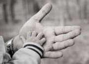 72 % des Français veulent que les accidents de la vie courante soient grande cause nationale 2013