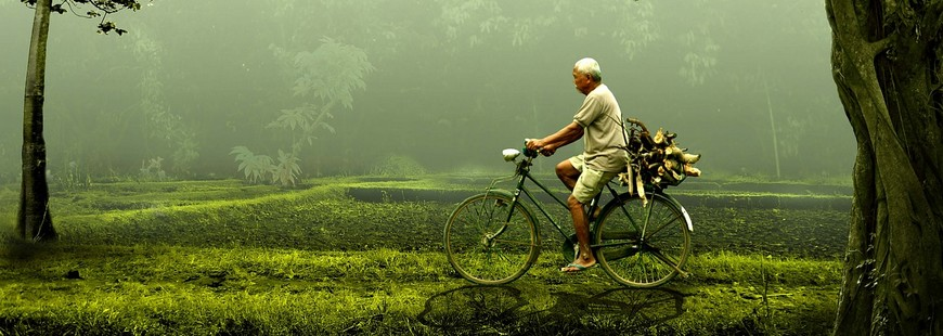 Faire du vélo serait mieux pour la santé que la marche